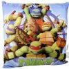 Teenage Mutant Ninja Turtles Cushion